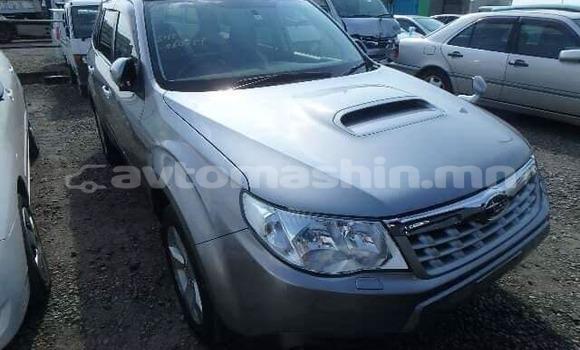 Buy Used Subaru Forester Other Car in Ulaanbaatar in Ulaanbaatar